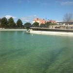 Ciudad Real: El Ayuntamiento externaliza la elaboración de estudios microbiológicos en fuentes ornamentales