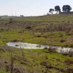 """Treinta años después, el agua aflora en los primeros """"ojos"""" del Guadiana"""