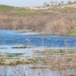 El agua en los Ojos del Guadiana, a menos de cuatro metros