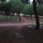 Intolerable: Denuncian la colocación de «trampas para ciclistas» en Alcázar de San Juan