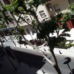 """En breve se iniciarán las nuevas semipeatonalizaciones: La alcaldesa asegura que el bulevar ha dado """"vida"""" a la Avenida del Rey Santo"""