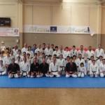Ciudad Real: Buen resultado de la jornada técnica multidisciplinar de artes marciales