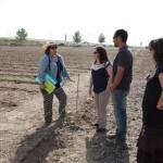 La agroecología se muestra como una alternativa real para la creación de empleo en Torralba de Calatrava