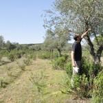 Luciana constituye un Consejo Municipal para impulsar el desarrollo rural agroecológico de la localidad