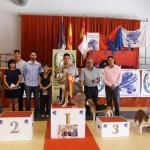 70 participantes en el primer Concurso de Belleza Canina daimieleño