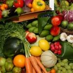 Ciudad Real: Un espacio dedicado al trueque agroecológico será la principal novedad del Encuentro Joven