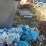 El PSOE de Alcázar denuncia que en El Porvenir hay suciedad y ratas