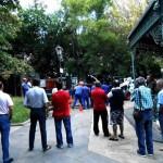 Puertollano: Expectación ciudadana ante los trabajos de poda en uno de los árboles del que cayó una rama principal