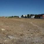 El Ayuntamiento de Carrión de Calatrava promueve un recinto para huertos urbanos