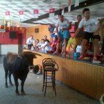 Un toro se sale del recorrido del encierro de Villamayor y se cuela en la sede de una peña