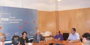 Los parlamentarios socialistas, reunidos con el comité de empresa de Elcogas antes de la votación
