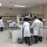 La UNED de Ciudad Real inicia las prácticas obligatorias en las carreras de ciencias