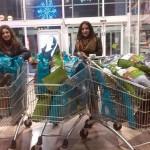 La Bienvenida recoge más de 200 kilos de solidaridad en una tarde