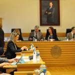 Vídeo: Pleno ordinario de enero de 2015 del Ayuntamiento de Ciudad Real