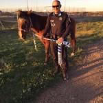 Vaqueros puertollaneros: La Policía Local rescata a un caballo desorientado