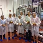 Ciudad Real: 290 desempleados se beneficiaron el pasado año del programa de empleo de Cáritas