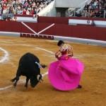 Colectivos preparan una acción de protesta contra la celebración de una corrida de toros en Puertollano