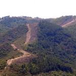 Denuncian un nuevo destrozo ambiental en el Parque Natural del Valle de Alcudia y Sierra Madrona