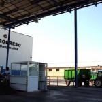 La Cooperativa El Progreso realiza prospecciones para ver si puede comenzar a vendimiar a mediados de agosto