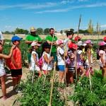 Argamasilla de Alba: La Escuela de Verano fomenta el reciclaje y el cuidado del Medio Ambiente