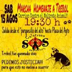 Marcha homenaje a Trébol, el perro que murió en Carrión tras ser quemado vivo