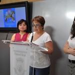 Programación de la Feria 2015: La ciudadana ejemplar pregonará las fiestas de Ciudad Real