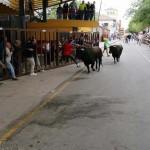 Trasladado al hospital tras resultar herido por asta de toro en el primer encierro de Almodóvar del Campo