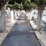 Asfaltados tres patios del Cementerio