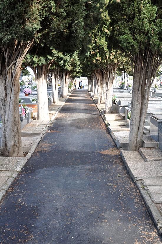 obras-cementerio-04