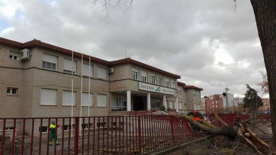 arbol centro ocupacional 02