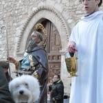 Ciudad Real celebrará este fin de semana la festividad de San Antón