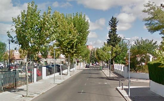 Vista de la calle Encinas