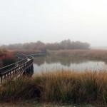 Villarrubia de los Ojos organiza un Curso de Fotografía de espacios naturales con motivo del Día de los Humedales
