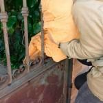 Ciudad Real Felina reclama ayuda para atender a un gato rescatado de una reja en Poblete