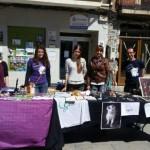 Llamamiento a «gatómicos»: Mercadillo Solidario en Miguelturra