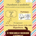 Miguelturra: Mercadillo solidario en favor de  Gatómicas y Ciudad Real Cats