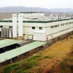 Puertollano: Aurinka acondiciona las instalaciones de Silicio Solar y prevé comenzar en septiembre las obras de remodelación