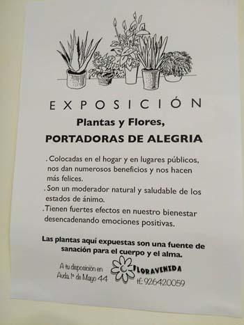 plantas9