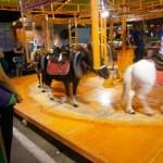 En la Feria de Ciudad Real no se permitirá la «explotación» de animales