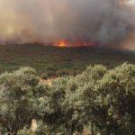 Extinguido el incendio de Piedrabuena 30 horas después de ser detectado