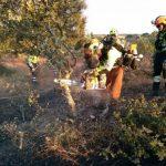 En el ecuador de la campaña de alto riesgo del Plan Infocam 2016 de incendios forestales se ha registrado 73 incendios, 18 de ellos en Ciudad Real