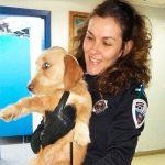 La Policía Local de Puertollano su suma a una campaña de la Guardia Civil contra el maltrato y abandono animal