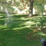 Vandalismo en el parque contiguo al Instituto Atenea
