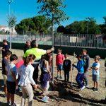Escolares de Valverde participan en una plantación de árboles con ENO Green Cities Network