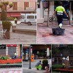 """La alcaldesa rechaza la imagen apocalíptica, con ratas corriendo por la ciudad, que el PP """"quiere vender"""" de Ciudad Real"""