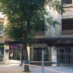 Ciudad Real: El PP denuncia que la Junta de Gobierno Local ha aprobado la tala de siete árboles sanos