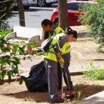 Puertollano: 55 desempleados de 25 a 65 años serán contratados con el Plan Extraordinario de Empleo