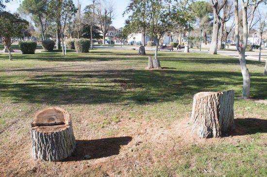 arboles talados parque de gasset 1