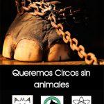 Comunicado: Gatómicas, Aspa Galeca y Asociación Animalista de Miguelturra reivindican circos sinanimales