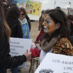 """El PACMA critica el """"postureo"""" del equipo gobierno respecto a la protección y bienestar animal"""